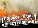 В Республике Алтай введен особый противопожарный режим!